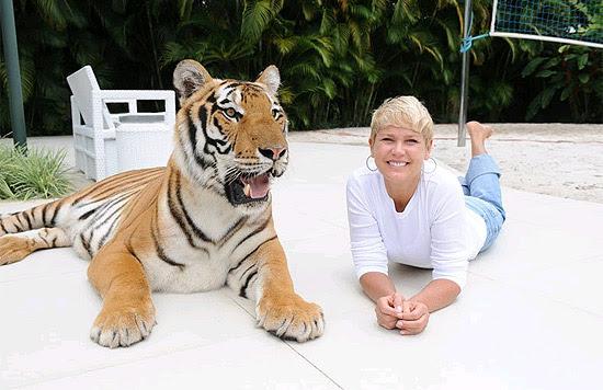 Xuxa posa com tigre