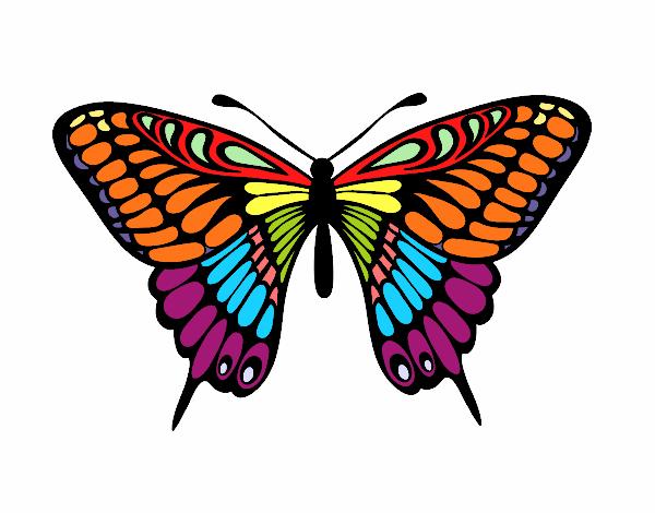 Dibujo De Mariposa Gran Mormón Pintado Por Inguel En Dibujosnet El