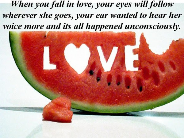 When You Fall In Love