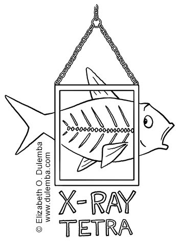 coloring page tuesday xray tetra