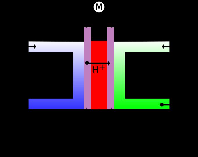 File:Fuel cell ES.svg