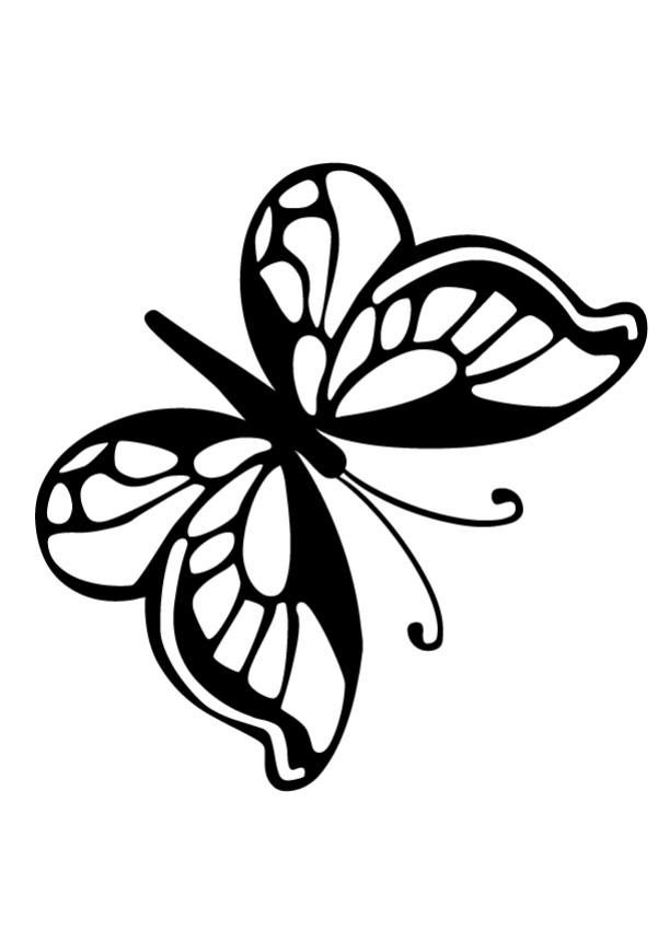 5200 Top Small Butterfly Coloring Pages Printable Download Free Images