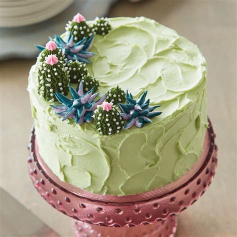 Dessert Oasis Succulent Cake   Wilton