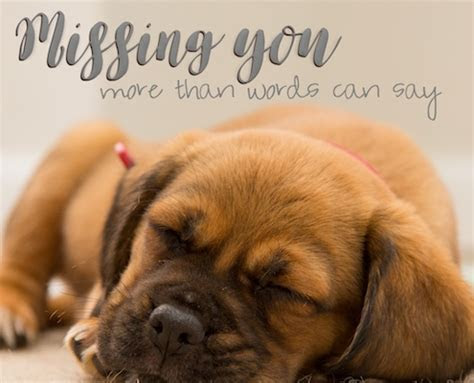 More Than Words Can Say. Free Miss You eCards, Greeting