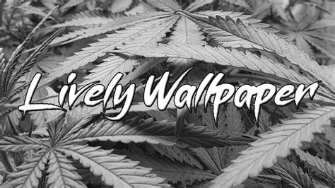 lively cannabis wallpaper youtube