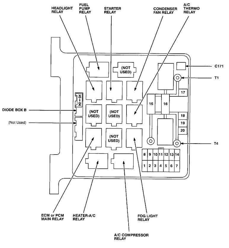 1999 Honda Passport Engine Diagram Wiring Diagram Permanent A Permanent A Emilia Fise It