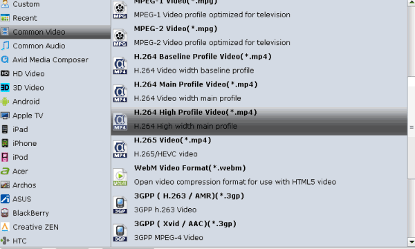 mp4-format-video-converter.gif