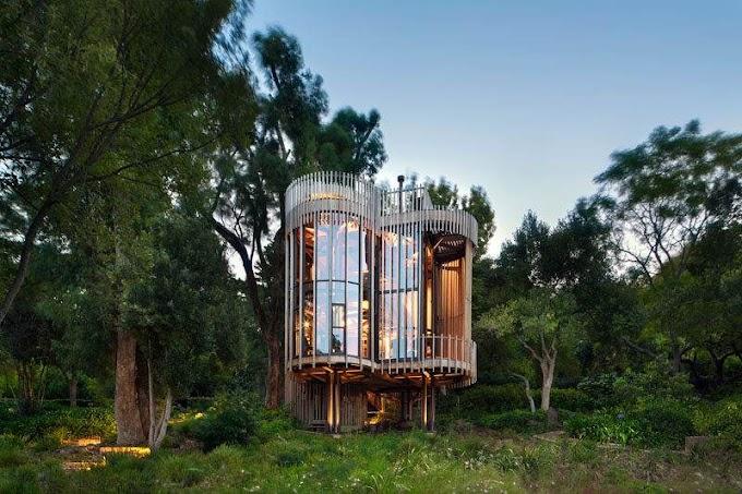 Ξύλινο σπίτι ανάμεσα στα δέντρα. Ομορφιά στη φύση