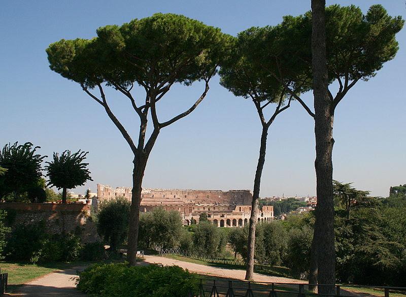Fil: 0 Colosseum - Rom 111.001 (1a) JPG.