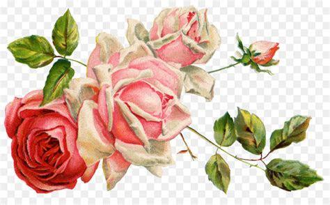 cut flowers floral design bunga png