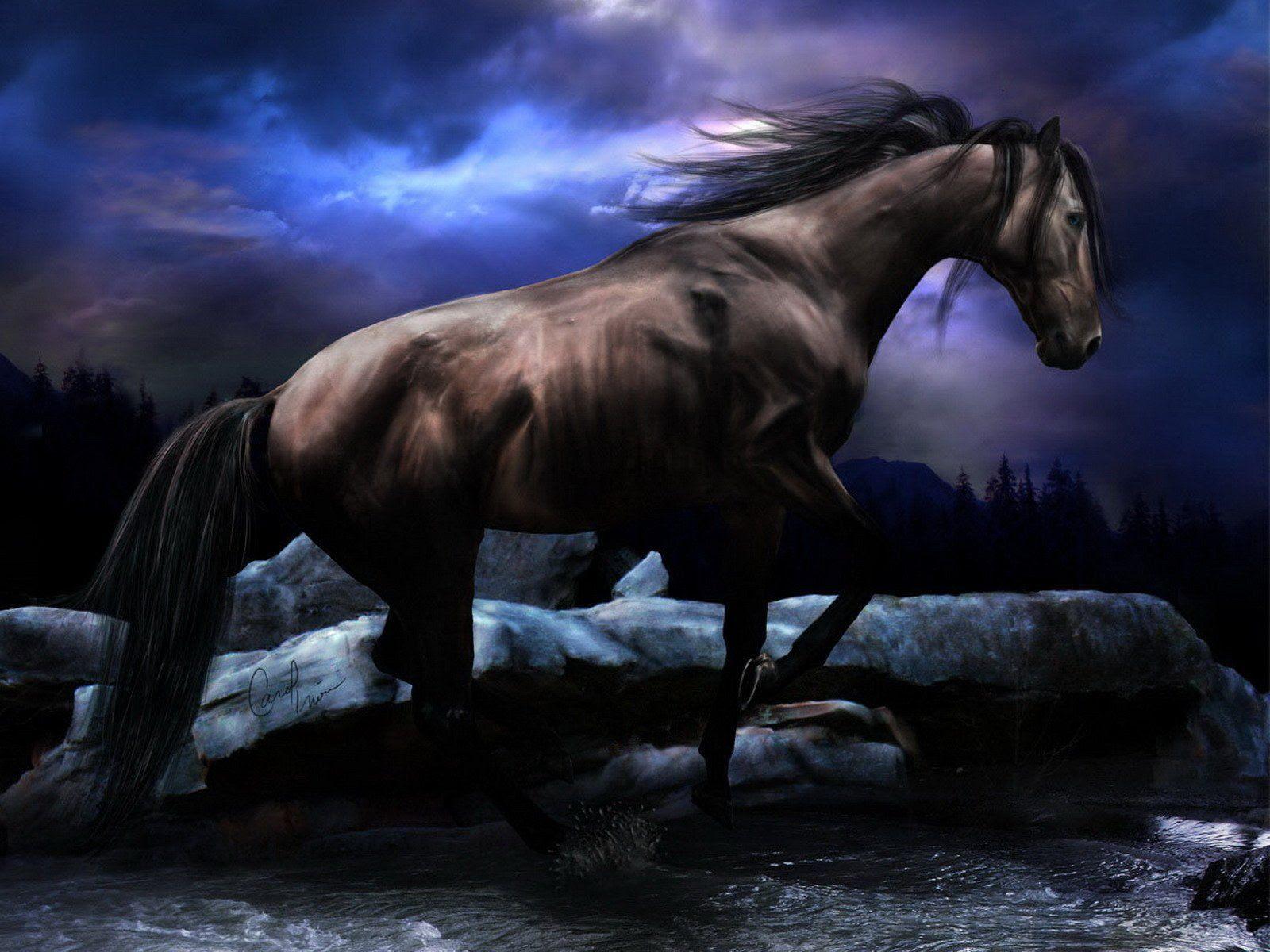 Free Horse Wallpaper Animals Town 1600x1200