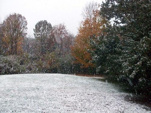 Snow_101809b