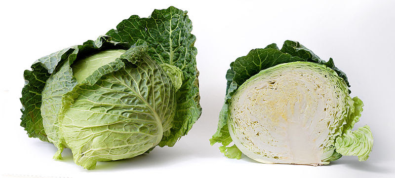 File:Cabbage and cross section on white.jpg