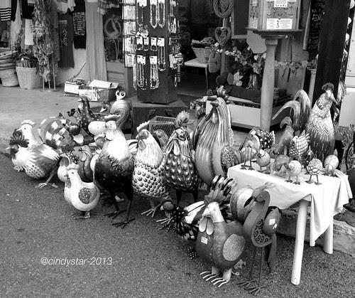 les coqs-grouses
