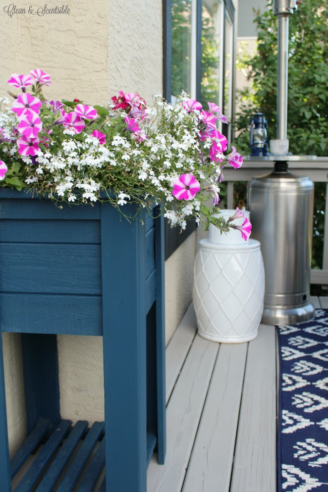 How To Care For Hanging Baskets and Planters | Clean and Scentsible