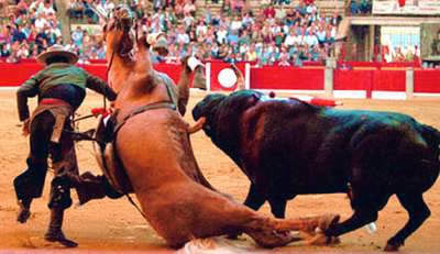 This photo was taken during a bullfight in Spain. The horse was killed.