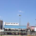 'תנובה' מאבדת אחיזה נוספת בשוק החלב - ביזנעס