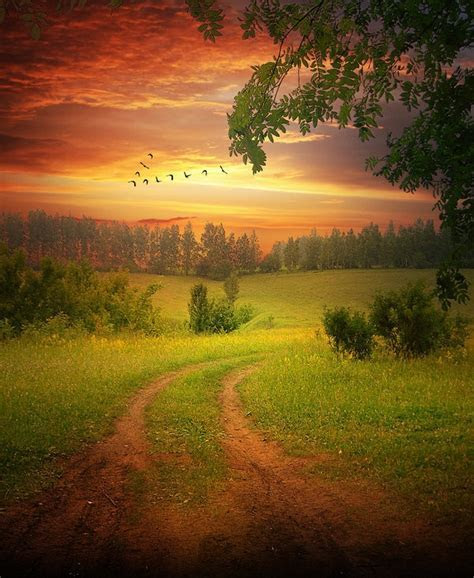 Wallpapers   Images   Picpile: Beautiful silent morning