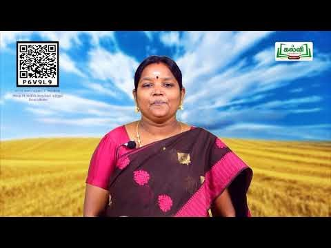 8th Science பயிர்ப்பெருக்கம் மற்றும் மேலாண்மை அலகு 21 பகுதி 4 TM Kalvi TV