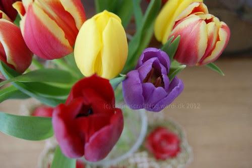 Tulips before editing