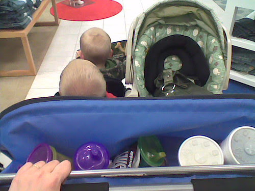 my view from the quad stroller (while wearing the baby)