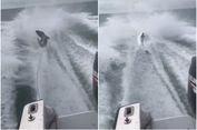 Seret Hiu Pakai 'Speedboat', Tiga Pria di AS Ditangkap Polisi