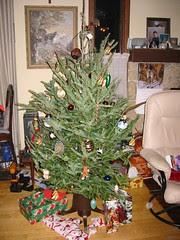 Christmas Tree at Dad's