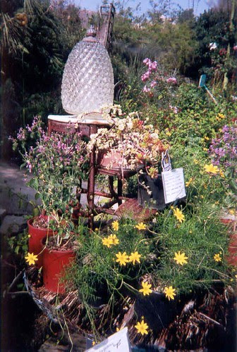 Garden display areas