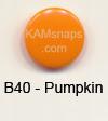 B40 Pumpkin