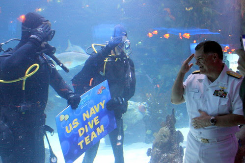 Navy divers participate in Houston Navy Week.