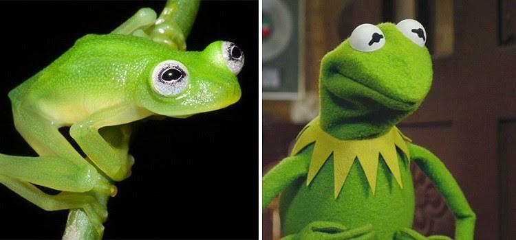 Αν δεν βλέπετε τις ομοιότητες, τότε τι να σας πούμε...