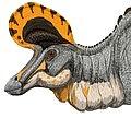 Lambeosaurus magnicristatus DB.jpg