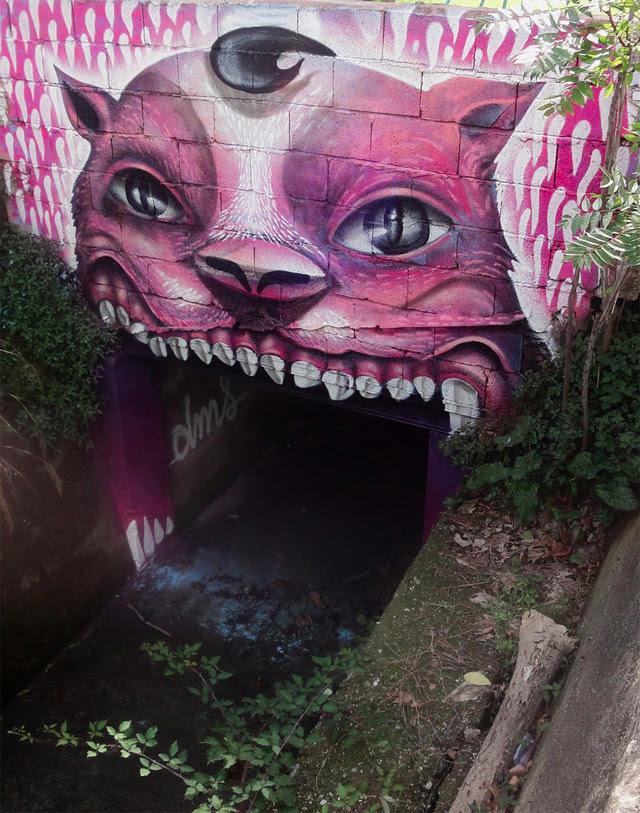 The Street Art of DMS street art graffiti