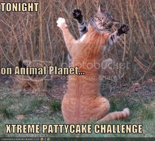 pattycake Pictures, Images and Photos