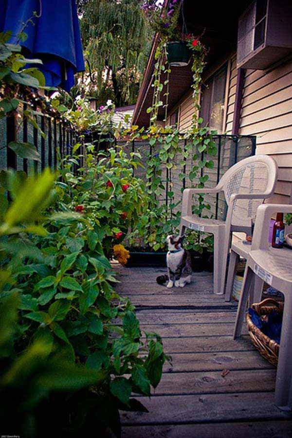 Small-Balcony-Garden-ideas-7
