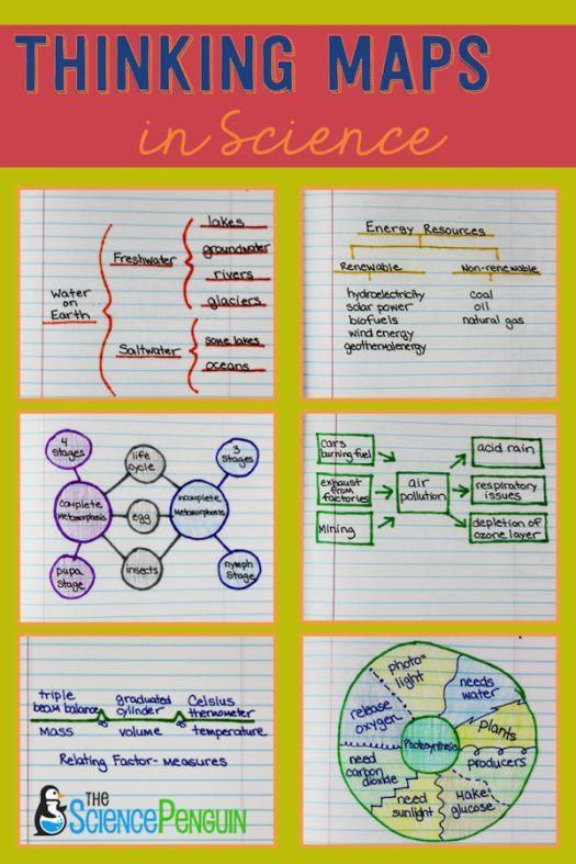 1000+ ideas about Thinking Maps on Pinterest | Thinking maps math ...