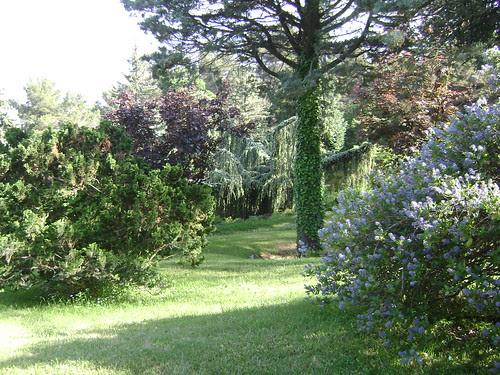 Roudnitska Garden