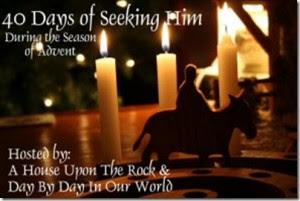 http://daybydayinourworld.com/2014/11/advent-beginning-walk-40-days-seeking/