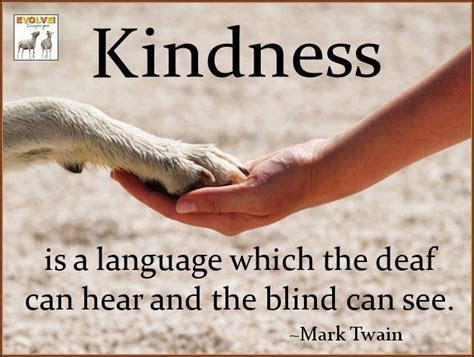 Kindness To Animals Quotes