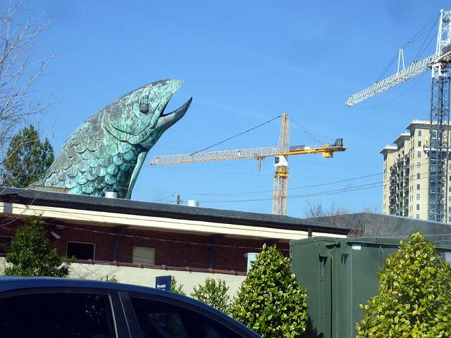P1080103-2011-03-03-Pharr-Road-Buckhead-Fish-Market-Giant-Fish