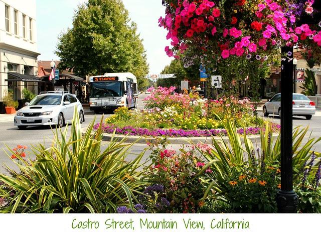 Castro Street Mountain View