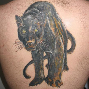 Panther Tattoo Meanings Itattoodesignscom
