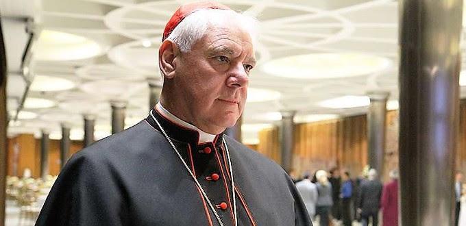 El Papa no renovará al cardenal Müller como Prefecto de la Congregación para la Doctrina de la Fe