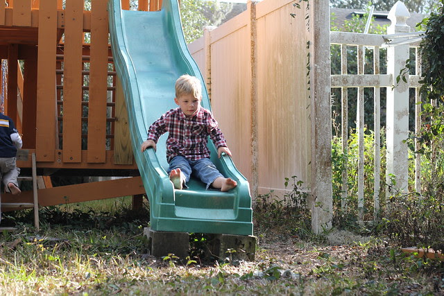 Playing in the Back Yard