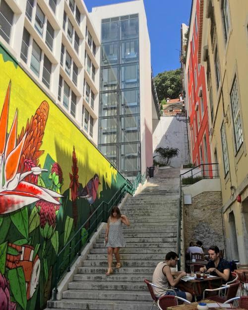 Exercício para depois de almoço#instagramcml #lisboa #lisbon http://ift.tt/2c0LvK1