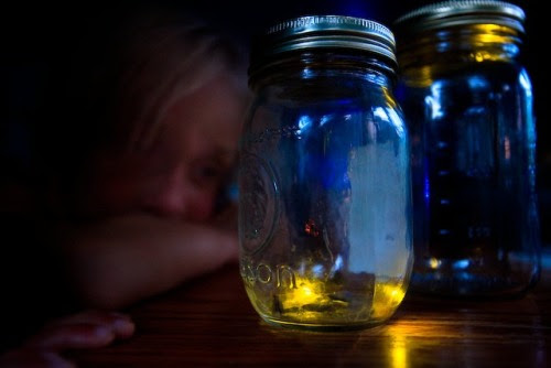 Kids Looking at Fireflies in a Jar