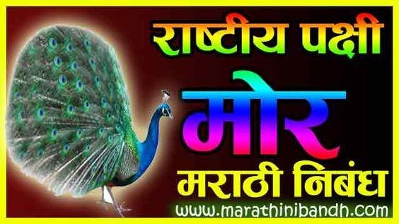 राष्ट्रीय पक्षी मोर मराठी निबंध | Rashtriya Pakshi Mor Nibandh In Marathi