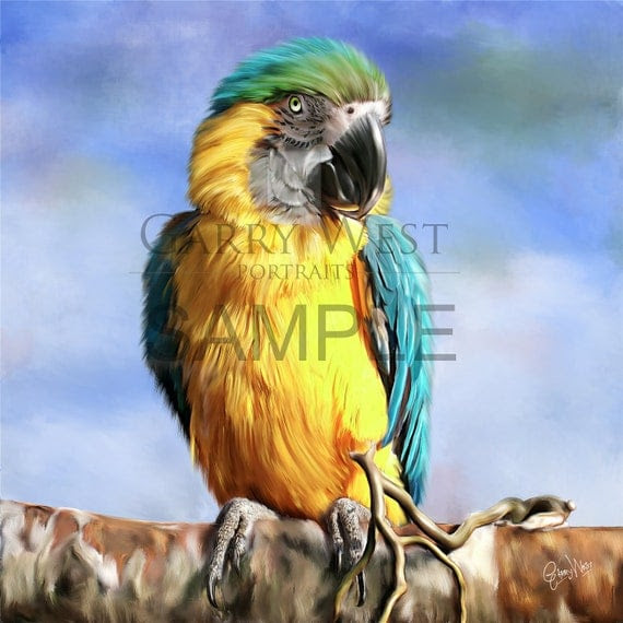 McCaw Bird on Etsy artist painting