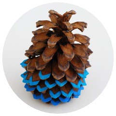 Ombré Pinecone 1