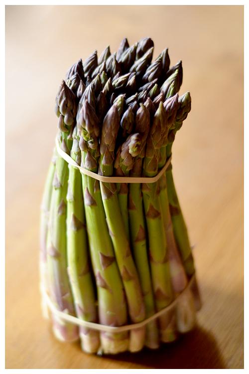 asparagus© by Haalo